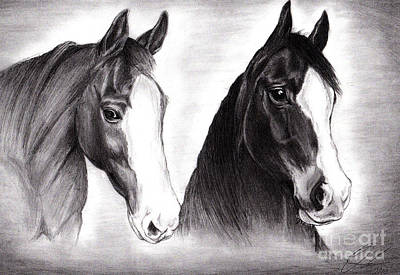 Drawing - Horses by Omoro Rahim