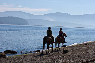 Photograph - Horses On The Beach - Morning by Marie Jamieson