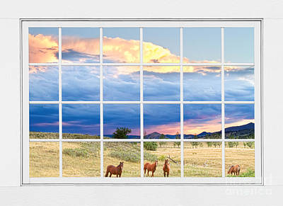 Equestrian Photograph - Horses On The Storm Large White Picture Window Frame View by James BO  Insogna