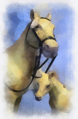 Broodmare Photograph - Horses Photo Art by Thomas Woolworth