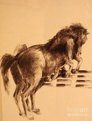 Dog Race Track Drawing - Horses Race by Mirek Bialy