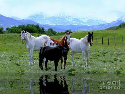 Horses Reflected Art Print by Al Bourassa