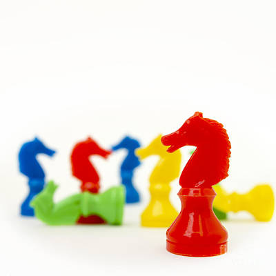 Green Color Photograph - Horses Representation by Bernard Jaubert