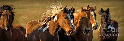 Horses - Running Free Art Print