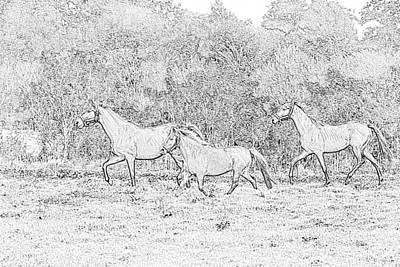 Horses Running Original