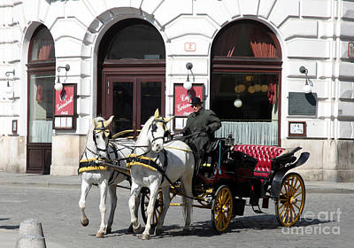 Fiaker Photograph - Horses With Hats Vienna by Ros Drinkwater