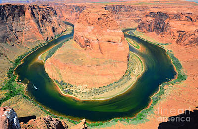 Photograph - Horseshoe Bend No Sky by Debra Thompson