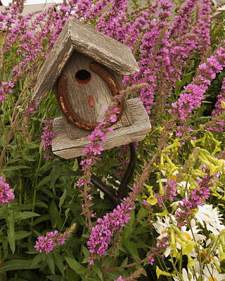 Photograph - Horseshoe Bird House by Coby Cooper