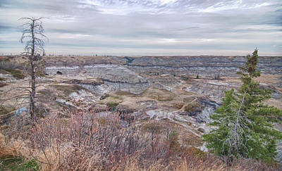 Photograph - Horseshoe Canyon 13276 by Guy Whiteley