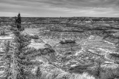Photograph - Horseshoe Canyon 13282 by Guy Whiteley