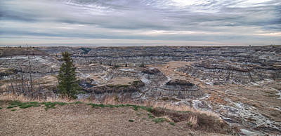 Photograph - Horseshoe Canyon 13294 by Guy Whiteley