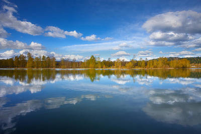 Photograph - Horseshoe Lake Reflections by Darren  White