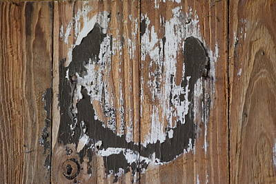 Photograph - Horseshoe Print Wood by Sheri McLeroy