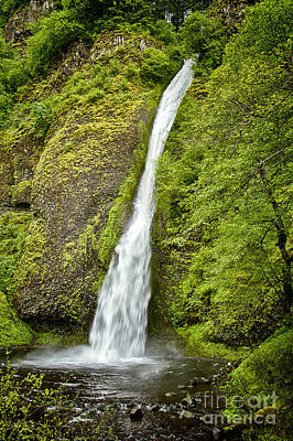 Photograph - Horsetail Falls by Carrie Cranwill