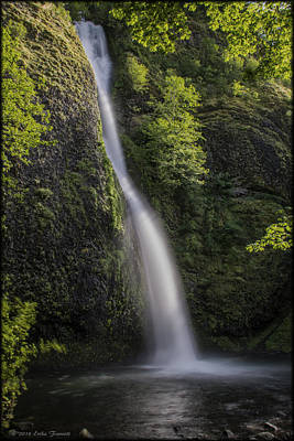 Photograph - Horsetail Falls by Erika Fawcett