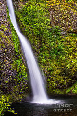 Photograph - Horsetail Falls by Sonya Lang