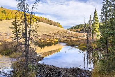 Photograph - Horsethief Creek Beaver Pond - Cripple Creek Colorado by Brian Harig