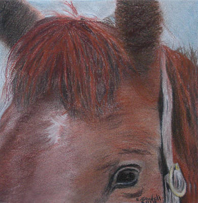 Painting - Horsin' Round A Bit by Claudia Goodell