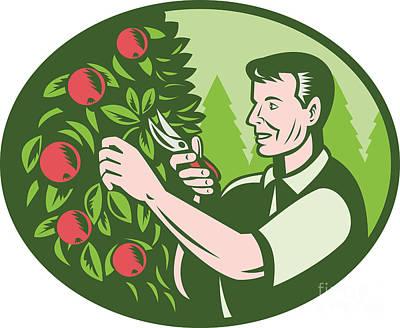Pruning Digital Art - Horticulturist Farmer Pruning Fruit by Aloysius Patrimonio