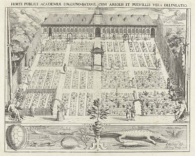 Hortus Botanicus Of Leiden University, The Netherlands Art Print