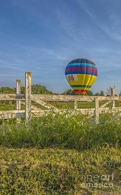 Photograph - Hot Air Balloon Riley 5 by David Haskett
