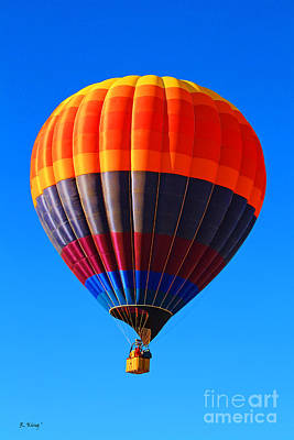 Photograph - Hot Air Balloon by Roena King