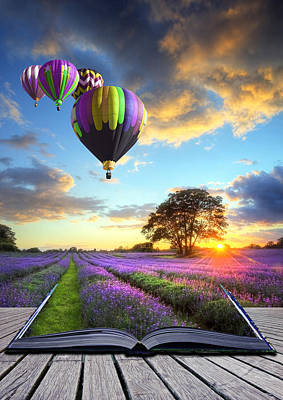 Natuure Photograph - Hot Air Balloons And Lavender Book by Matthew Gibson
