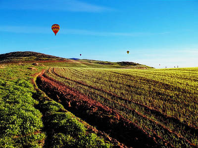 Photograph - Hot Air Balloons On A Golden Afternoon by Glenn McCarthy