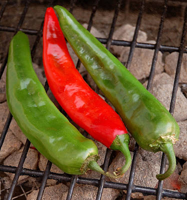 Hot And Spicy - Chiles On The Grill Art Print by Steven Milner