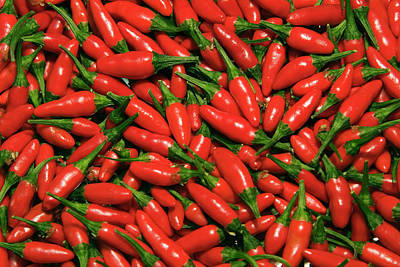Chili Pepper Photograph - Hot Chili Peppers (capsicum L by Nico Tondini