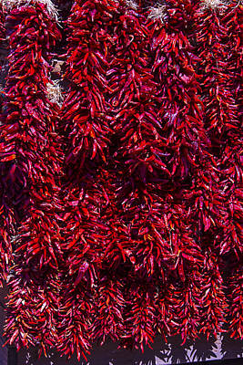 Hot Peppers Art Print by Garry Gay