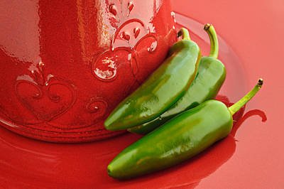 Still Life Photograph - Hot Peppers II by Terry Ellis