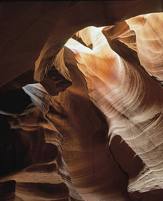 Slot Canyon  Vertical Art Print