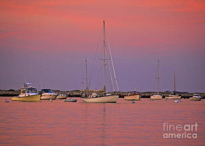 Photograph - Hot Pink Sunset by Amazing Jules