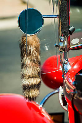 Racoon Photograph - Hot Rod Coon's Tail by Jill Reger