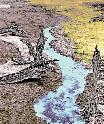 Yellowstone Digital Art - Hot Springs Driftwood - 3 by Linda  Parker