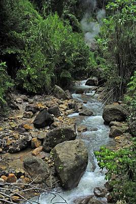 Photograph - Hot Water Spring In Dominica by Willie Harper