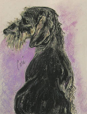 Doxie Drawing - Hot Wired by Cori Solomon