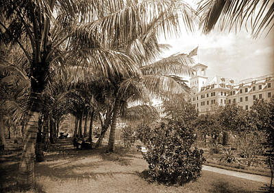Hotel Royal Poinciana, Lake Worth, Jackson, William Henry Art Print by Litz Collection