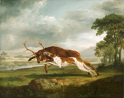 Painting - Hound Coursing A Stag by George Stubbs