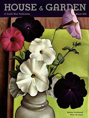 Bouquet Photograph - House & Garden Cover Illustration Of Petunias by Edna Reindel