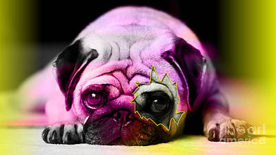 Pug Mixed Media - House Broken Pug Puppy by Marvin Blaine