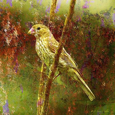 Larry Walker Digital Art Digital Art - House Finch From Another World by J Larry Walker