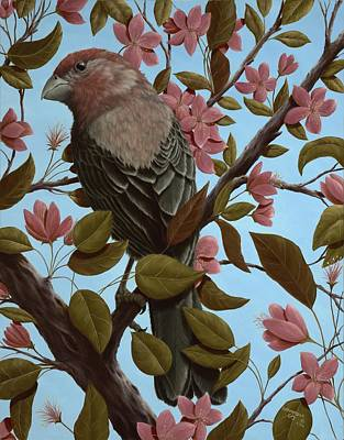Finch Painting - House Finch by Rick Bainbridge