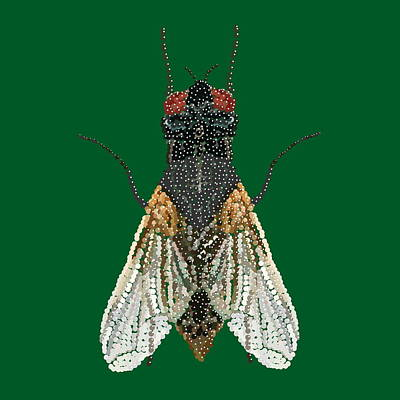 Digital Art - House Fly In Green by R  Allen Swezey