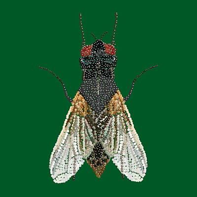 House Fly In Green Art Print by R  Allen Swezey