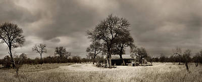 Photograph - House In The Bush by Des Jacobs