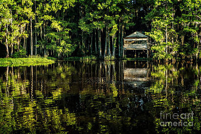 Photograph - House In The Swamp by Tamyra Ayles