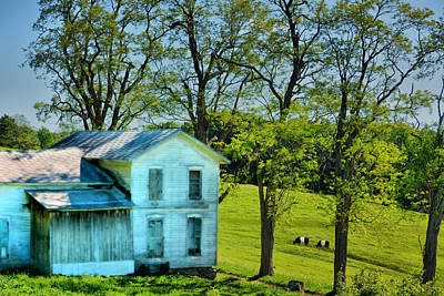 Oreo Photograph - House Of The Oreos by Emily Stauring