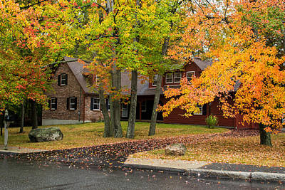 Photograph - House Surrounded With Colors by Jatinkumar Thakkar